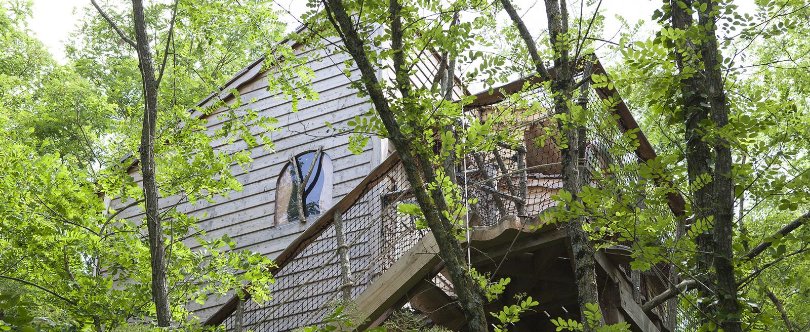 Cabane familiale dans les arbres